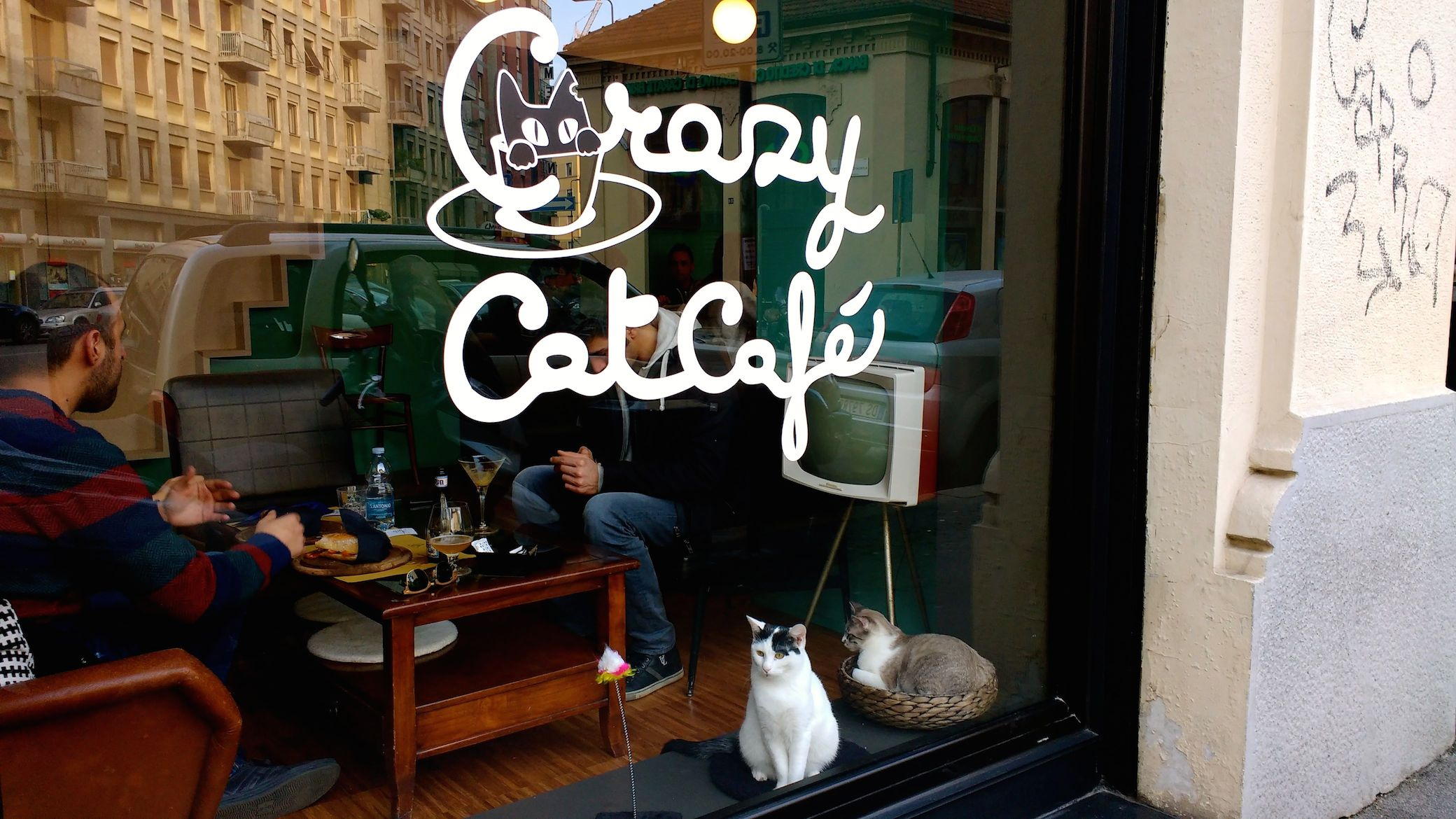 Cat Cafe Germany